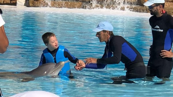dennis with dolphins